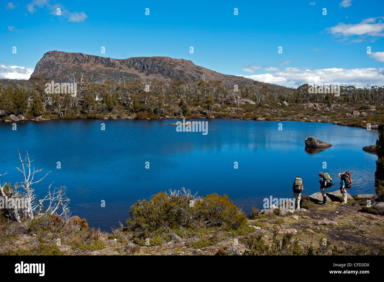 Three trekker at Solomons Jewels, Walls of Jerusalem National Park, UNESCO World Nature Site, Tasmania, Australia - Stock Image