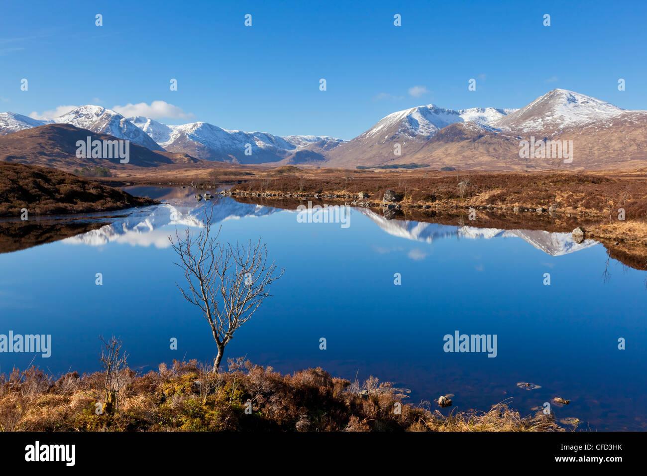 Stob a'choire Odhair, Aonach Mor, Beinn Mhic Chasgaig, and Meall a'Bhuirudh, Rannoch Moor, Argyll and Bute, - Stock Image