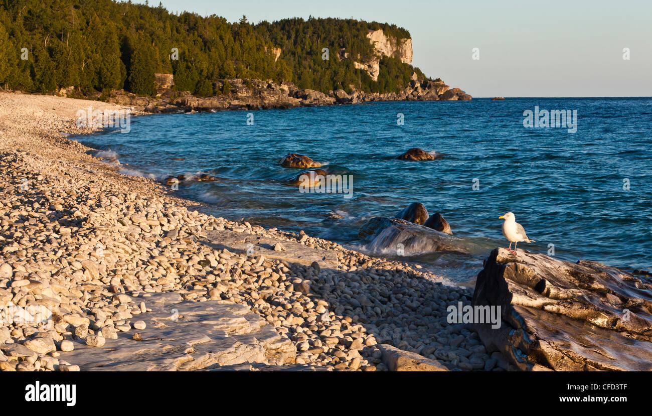 The shoreline of Georgian Bay at Halfway Log Dump, Bruce Peninsula National Park, Tobermory, Ontario, Canada. - Stock Image
