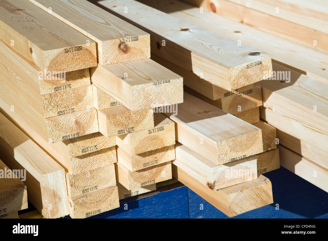 Ends of wooden planks in builder's yard - Stock Image