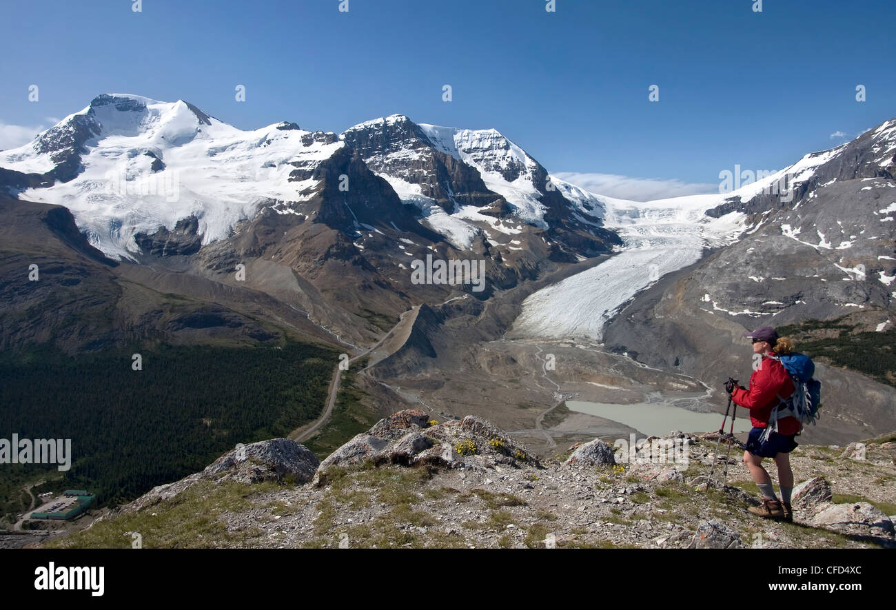 Hiker taking in the views of the Columbia Icefield from Wilcox Pass, Jasper National Park, Canadian Rockies, Alberta, Stock Photo