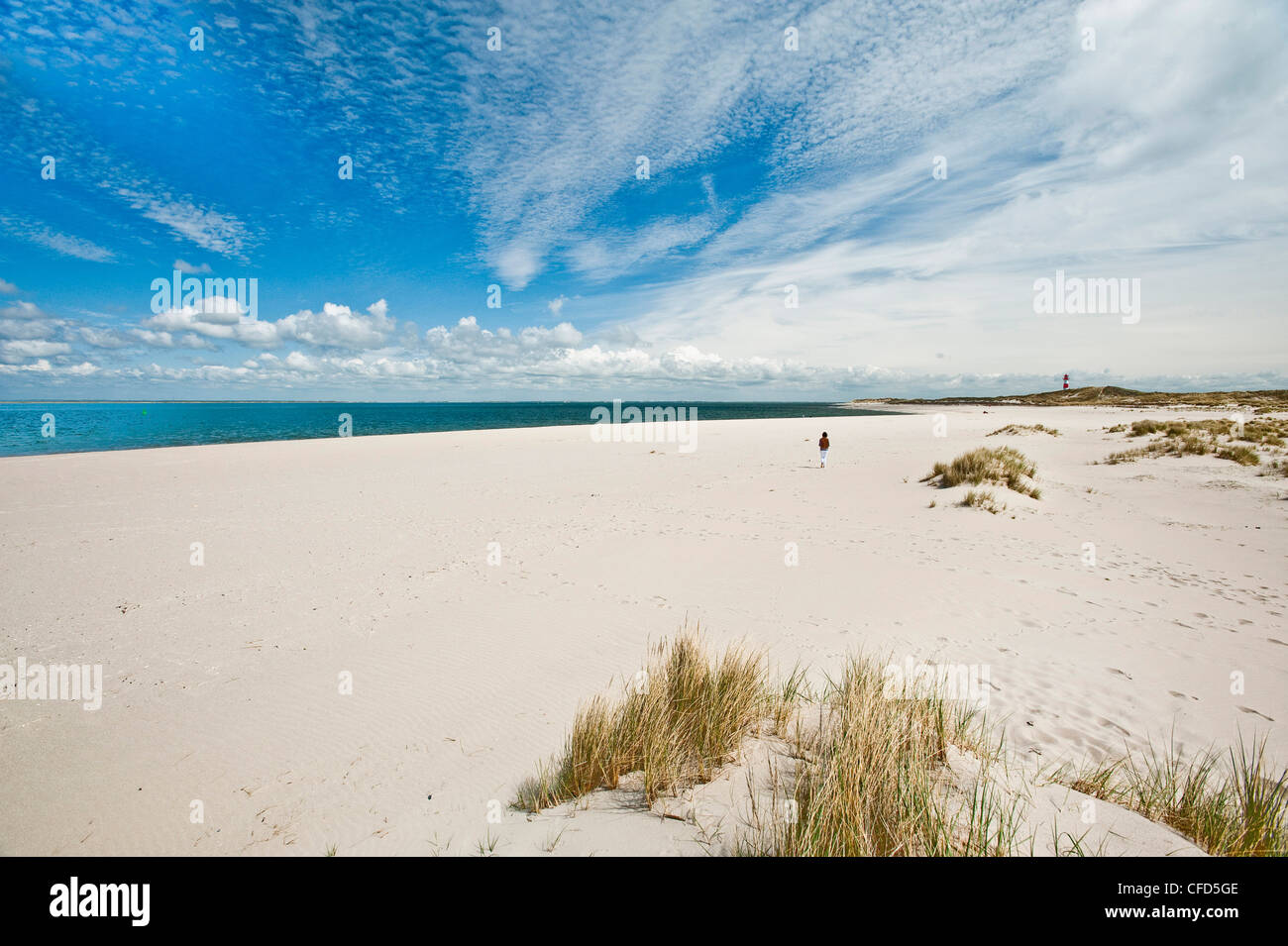 Woman walking barefooted on the beach, Island of Sylt, Schleswig Holstein, Germany, Europe - Stock Image
