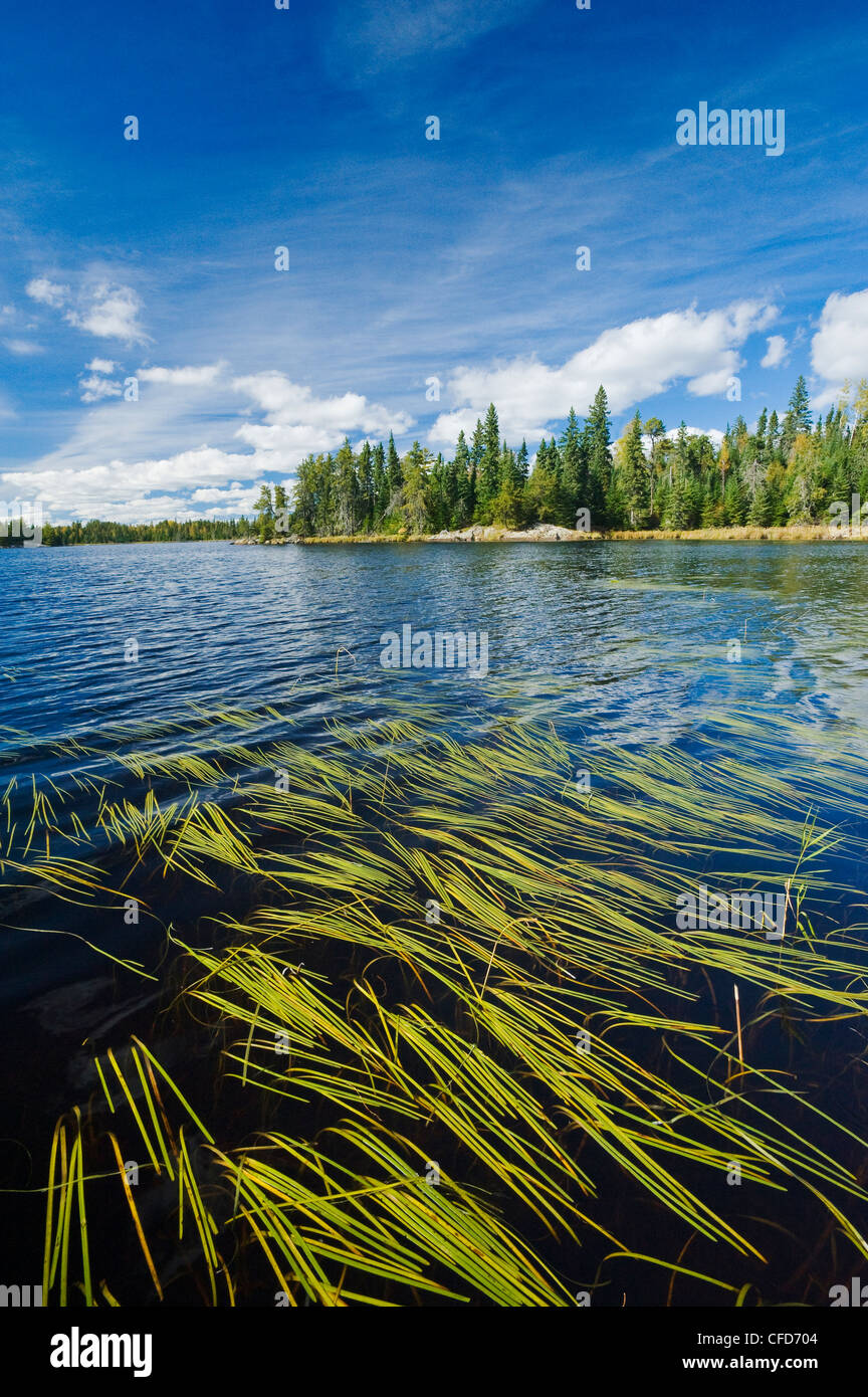 Nabob Lake, near Kenora, Northwestern Ontario, Canada - Stock Image