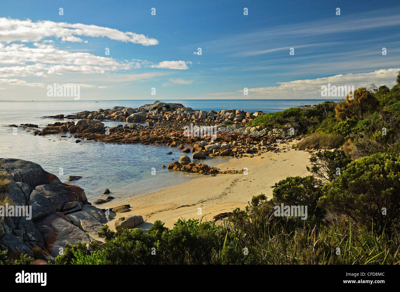 Beach at St. Helens Conservation Area, St. Helens, Tasmania, Australia, Pacific - Stock Image