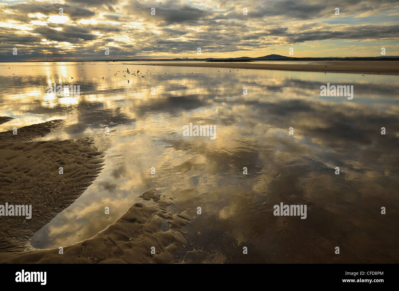 Shore at Anderson Bay, Bridport, Tasmania, Australia, Pacific - Stock Image