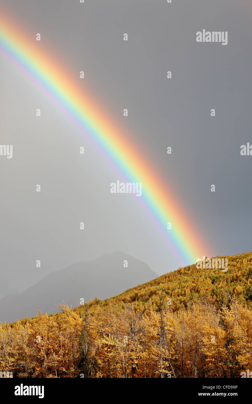 Rainbow with fall colors near King Mountain State Recreation Area and Chickaloon, Alaska, United States of America - Stock Image