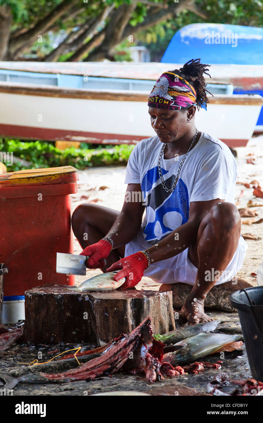 Local fisherman gutting and cleaning freshly caught fish. Working on the beach at Mare Anglaise bay, Mahe Island, - Stock Image