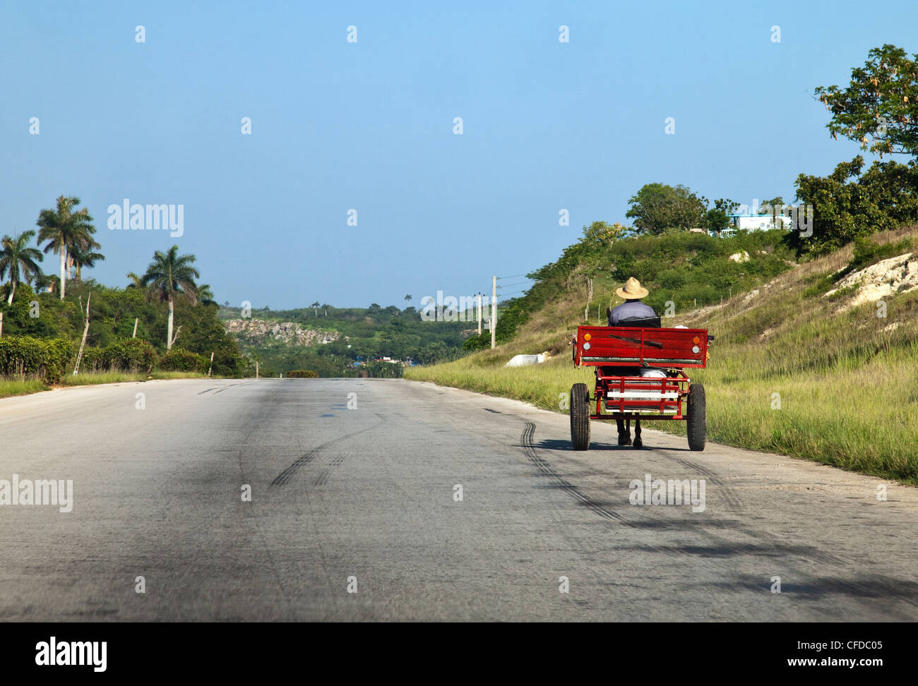 Man driving horse and cart on a wide deserted country road, Cuba, West Indies, Central America - Stock Image