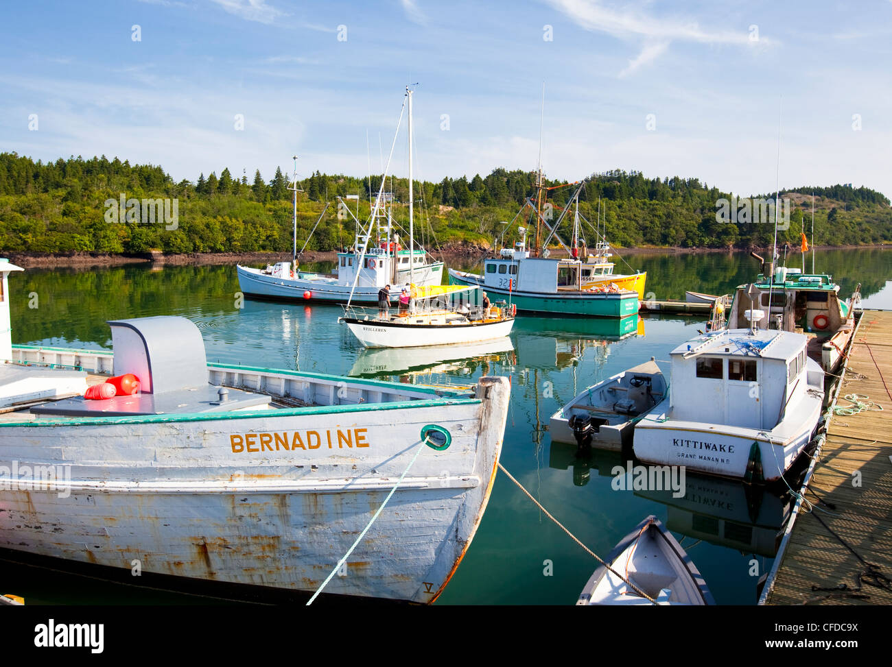 Fishing boats tied up at wharf, Black's Harbour, Bay of Fundy, New Brunswick, Canada - Stock Image