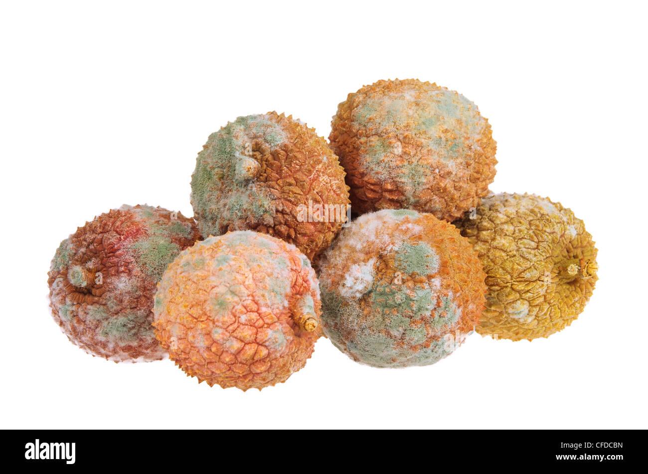 Litschi verdorben - lychee spoiled 03 - Stock Image