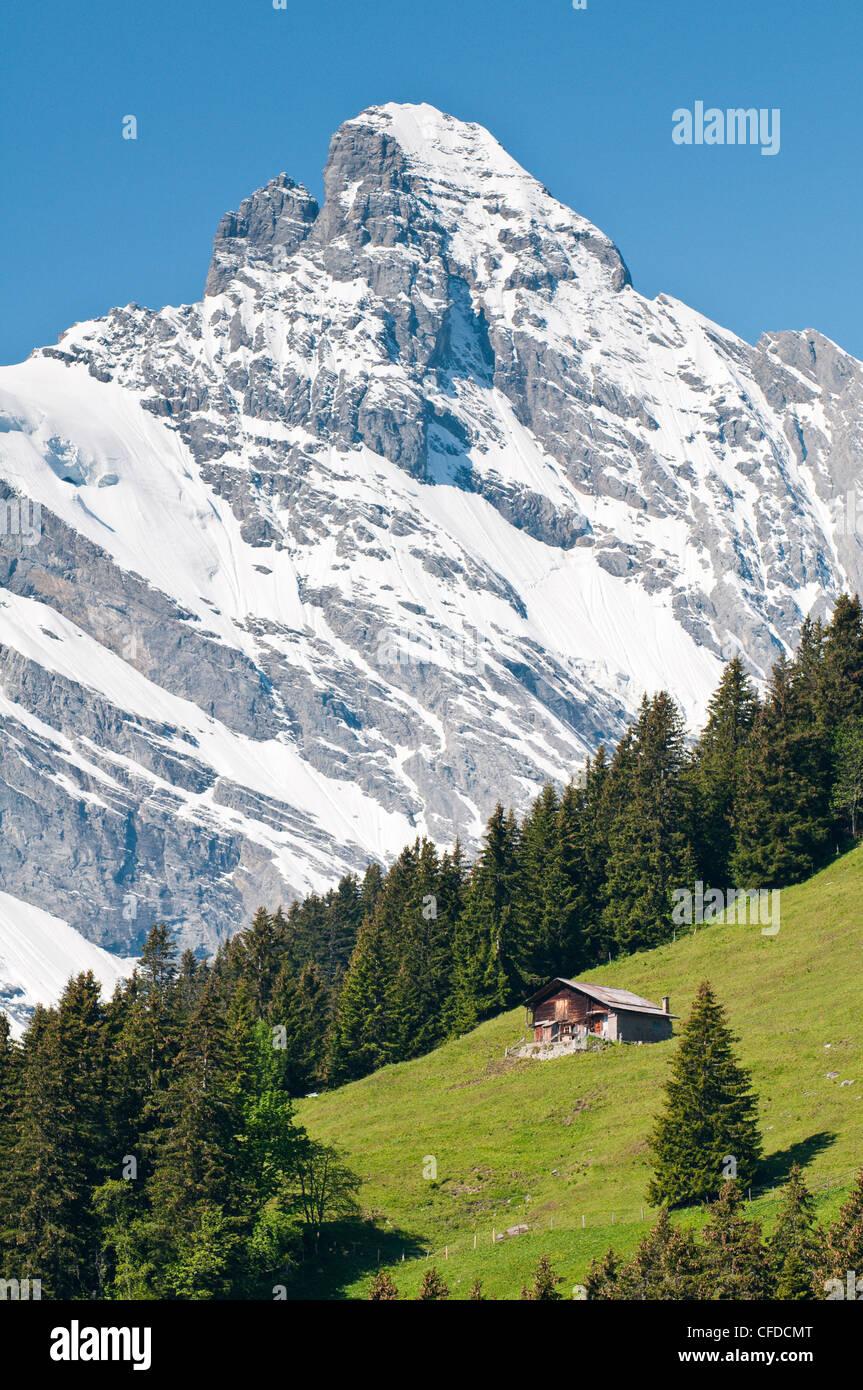Jungfrau massif and Swiss chalet near Murren, Jungfrau Region, Switzerland, Europe - Stock Image