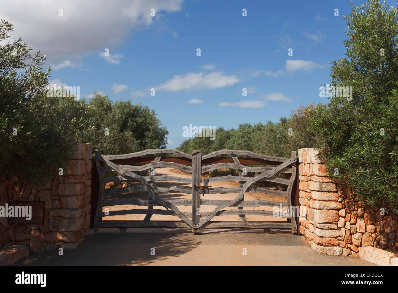 Gate, olive trees, near Cala Sa Nau, near Cala d Or, Mallorca, Balearic Islands, Spain, Europe - Stock Image