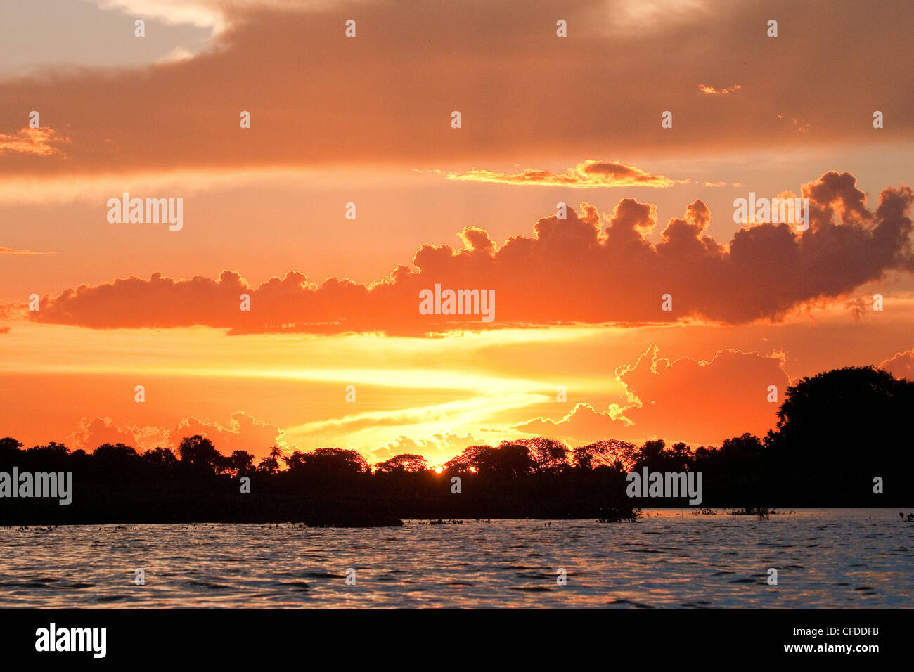Sunset, Pantanal wetlands, Southwestern Brazil, South America - Stock Image