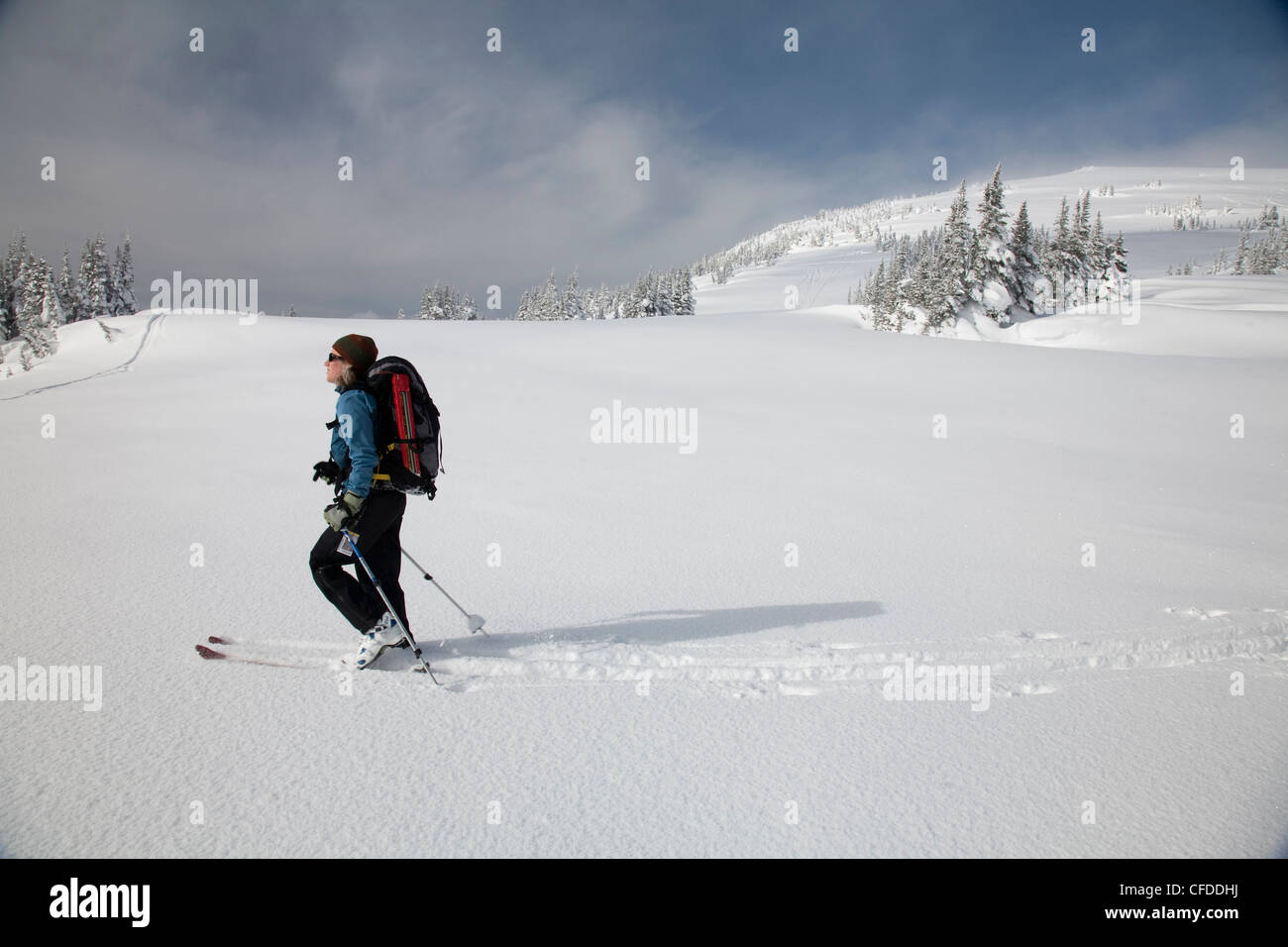 A female backcountry skier breaks trail through the snow. - Stock Image
