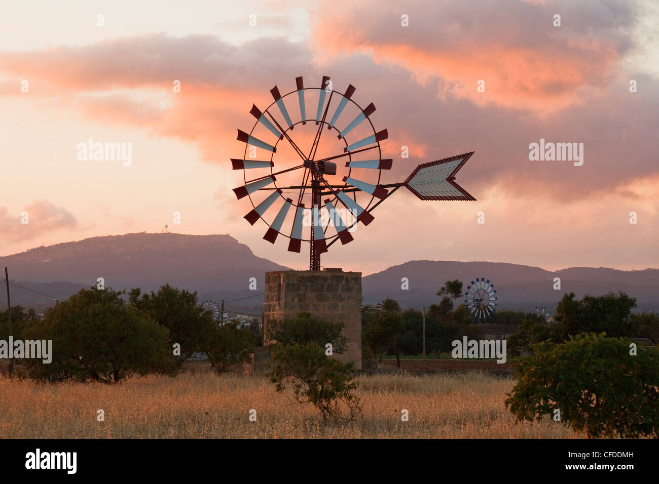 Wind wheels, cottage, near Campos, Mallorca, Balearic Islands, Spain, Europe - Stock Image