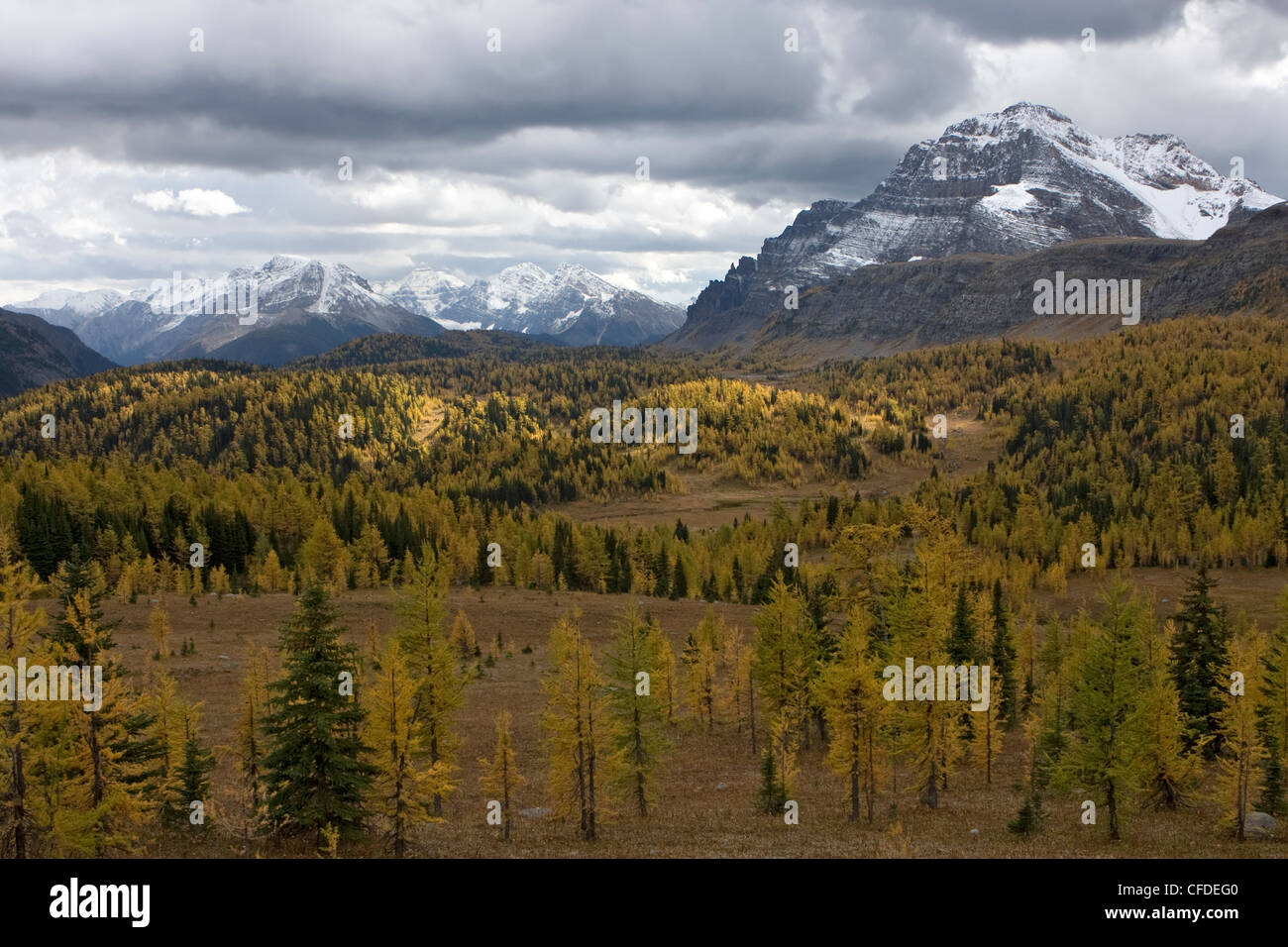 Trail to Titcomb Basin, Wind River Range, Wyoming, United States of America - Stock Image
