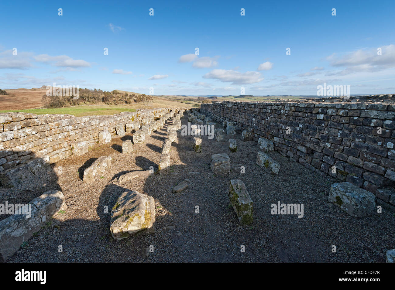 Foundations of a Roman Granary - Stock Image