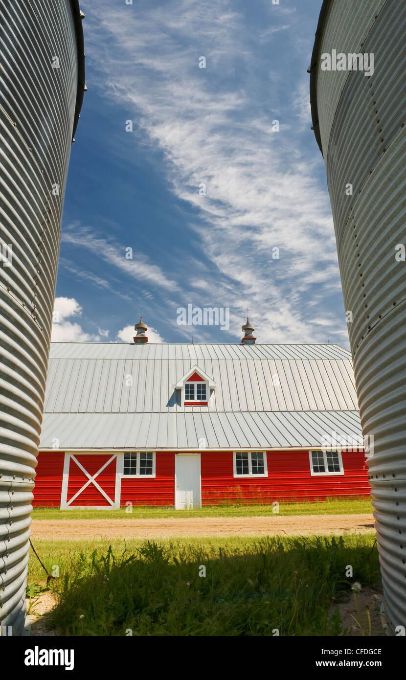 closeup of grain bins with red barn in the background near Torquay, Saskatchewan, Canada - Stock Image