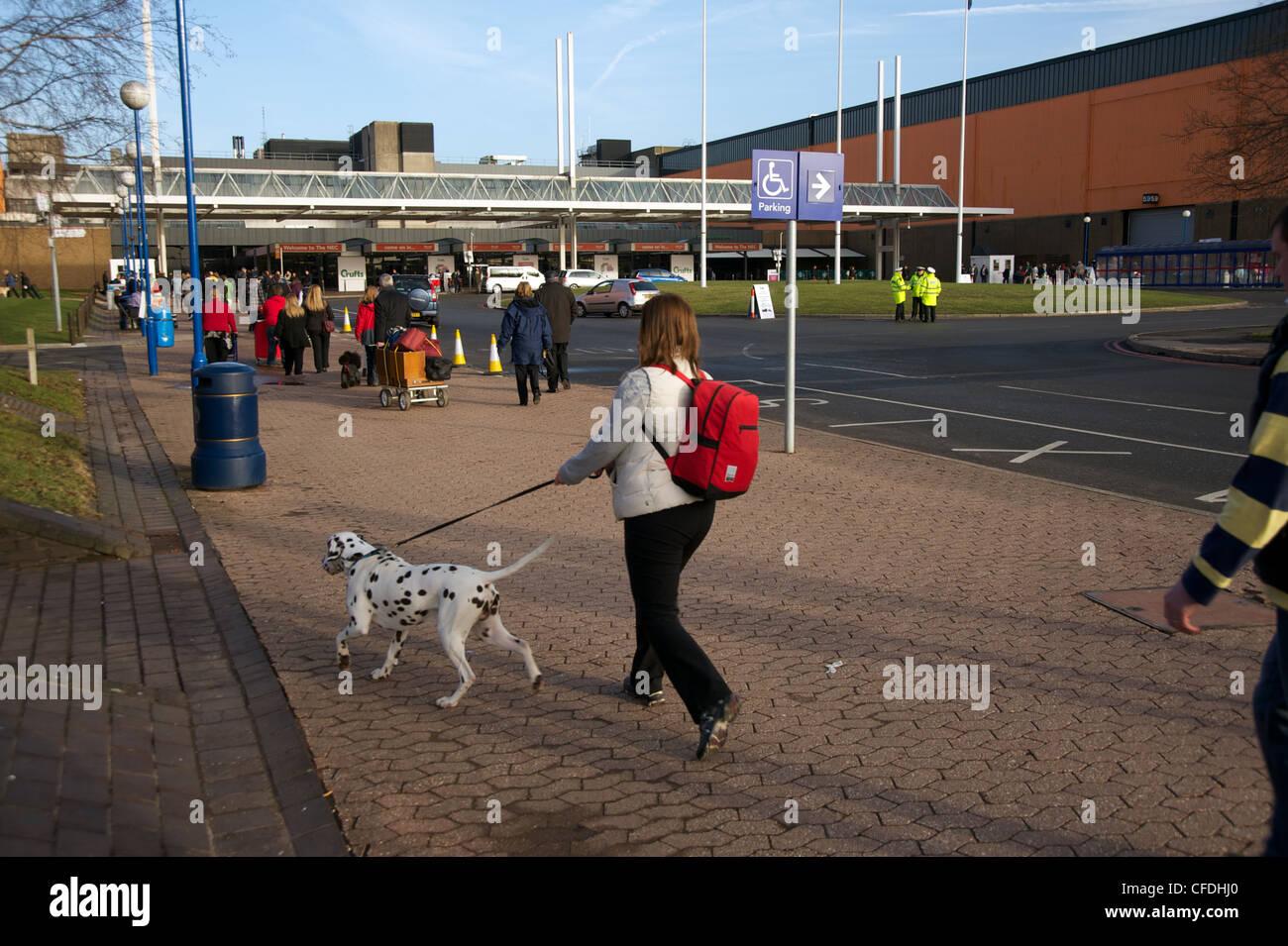 Crufts dog show 2011 - Stock Image