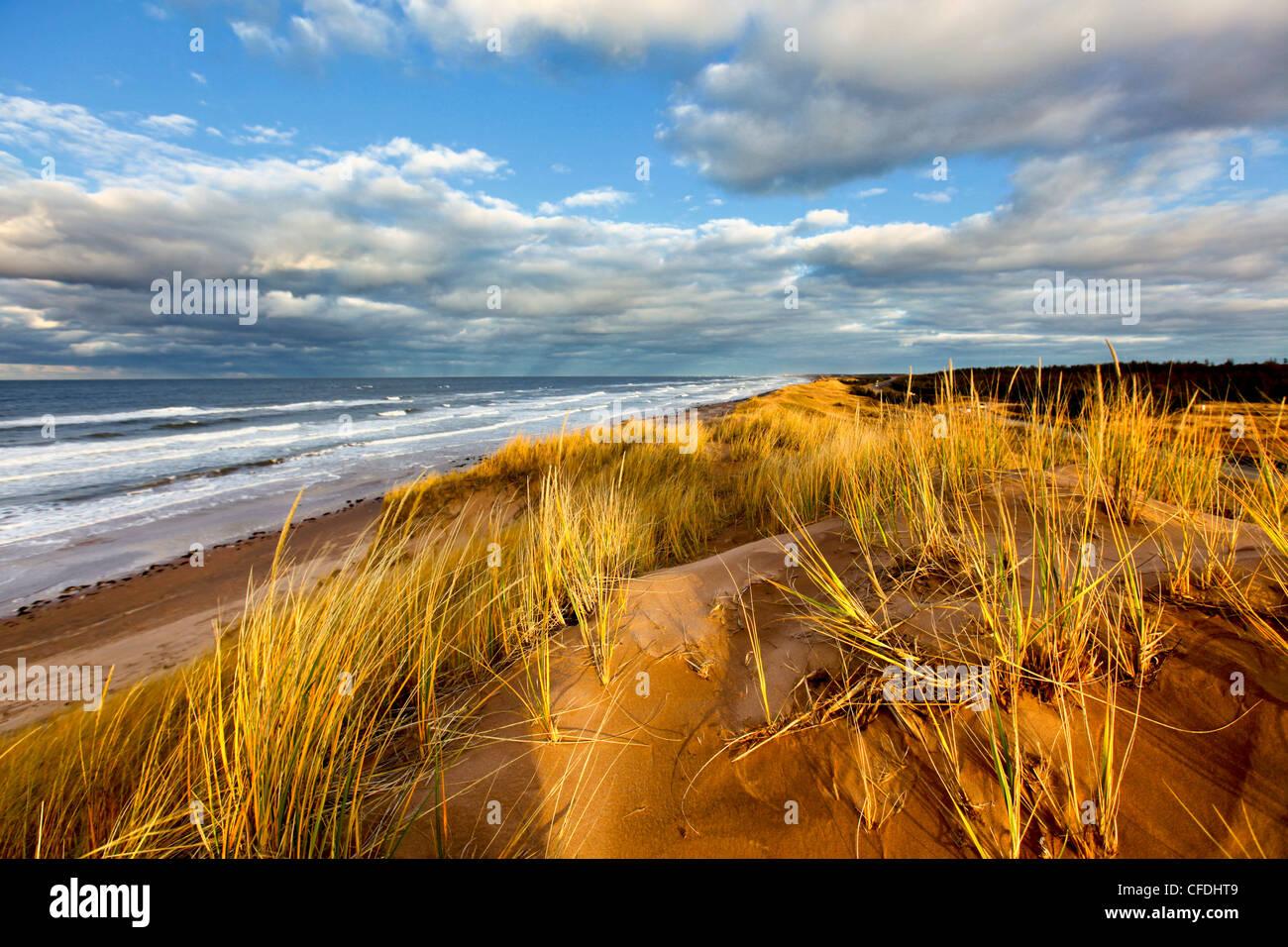 Sand Dune, Cavendish Beach, Prince Edward Island National Park, Prince Edward Island, Canada - Stock Image
