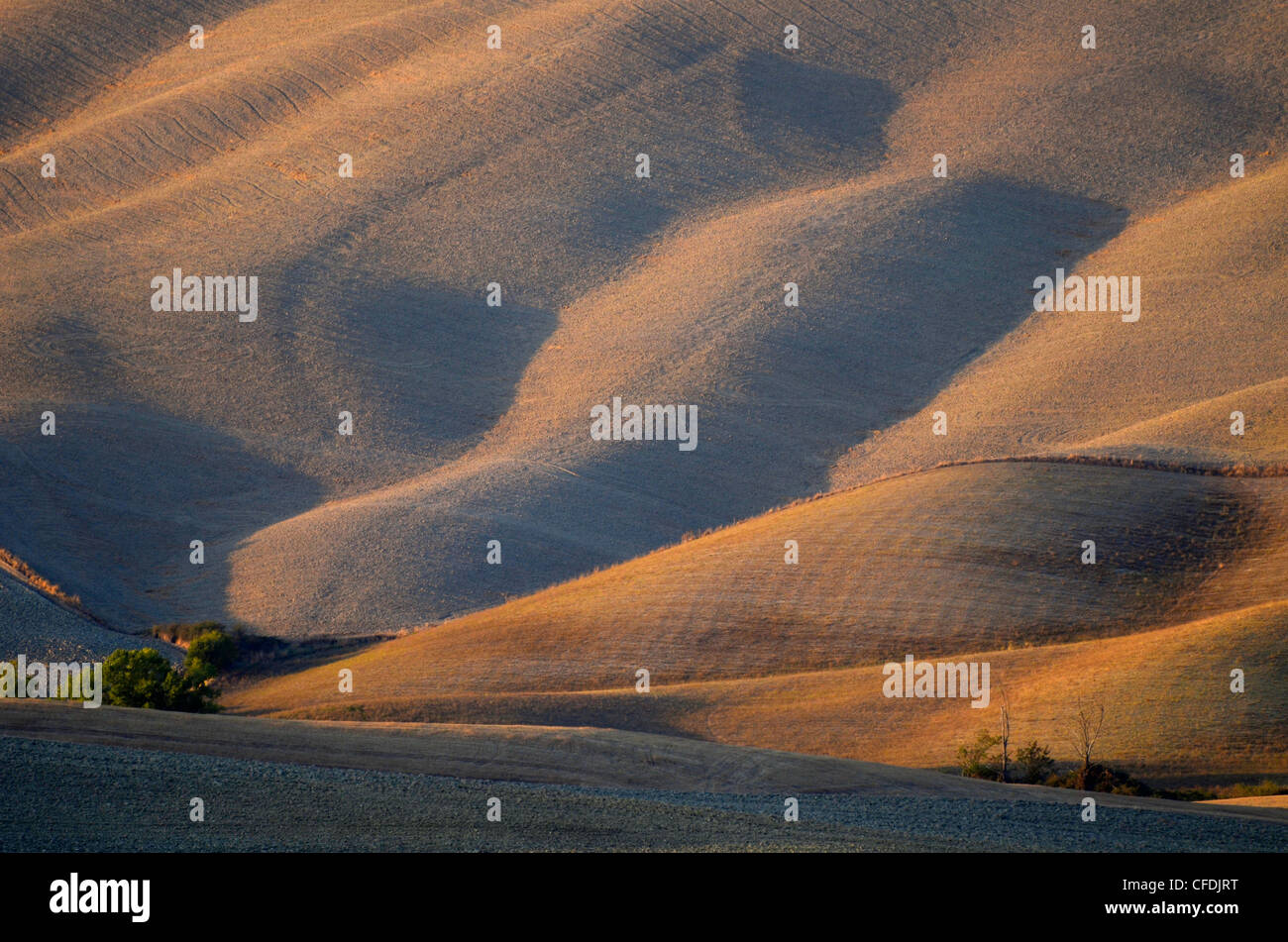 View of hilly landscape of the Crete, Tuscany, Italy, Europe - Stock Image
