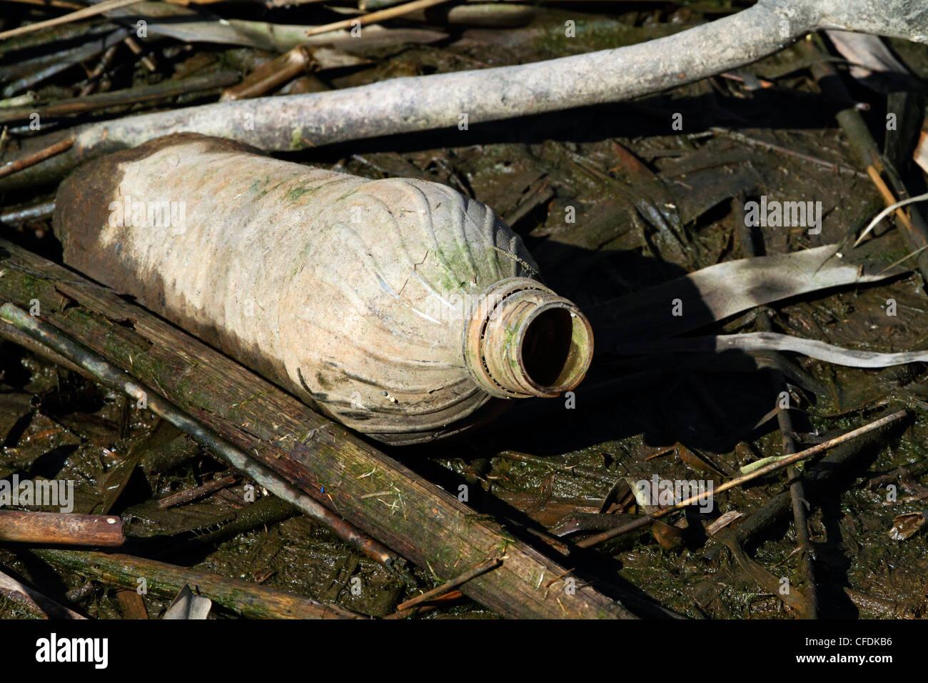 A discarded plastic water bottle at low tide in a Meadowlands saltmarsh. Richard DeKorte Park, Lyndhurst, New Jersey, - Stock Image