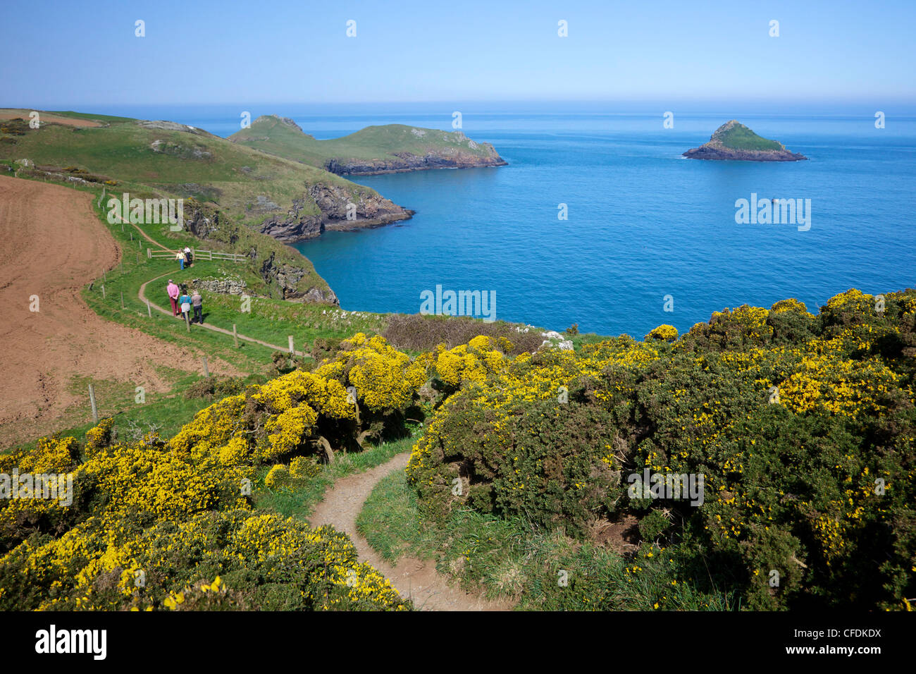 Walkers on coastpath with views of the Mouls and Rumps Point, Pentire Headland, Polzeath, North Cornwall, England, - Stock Image