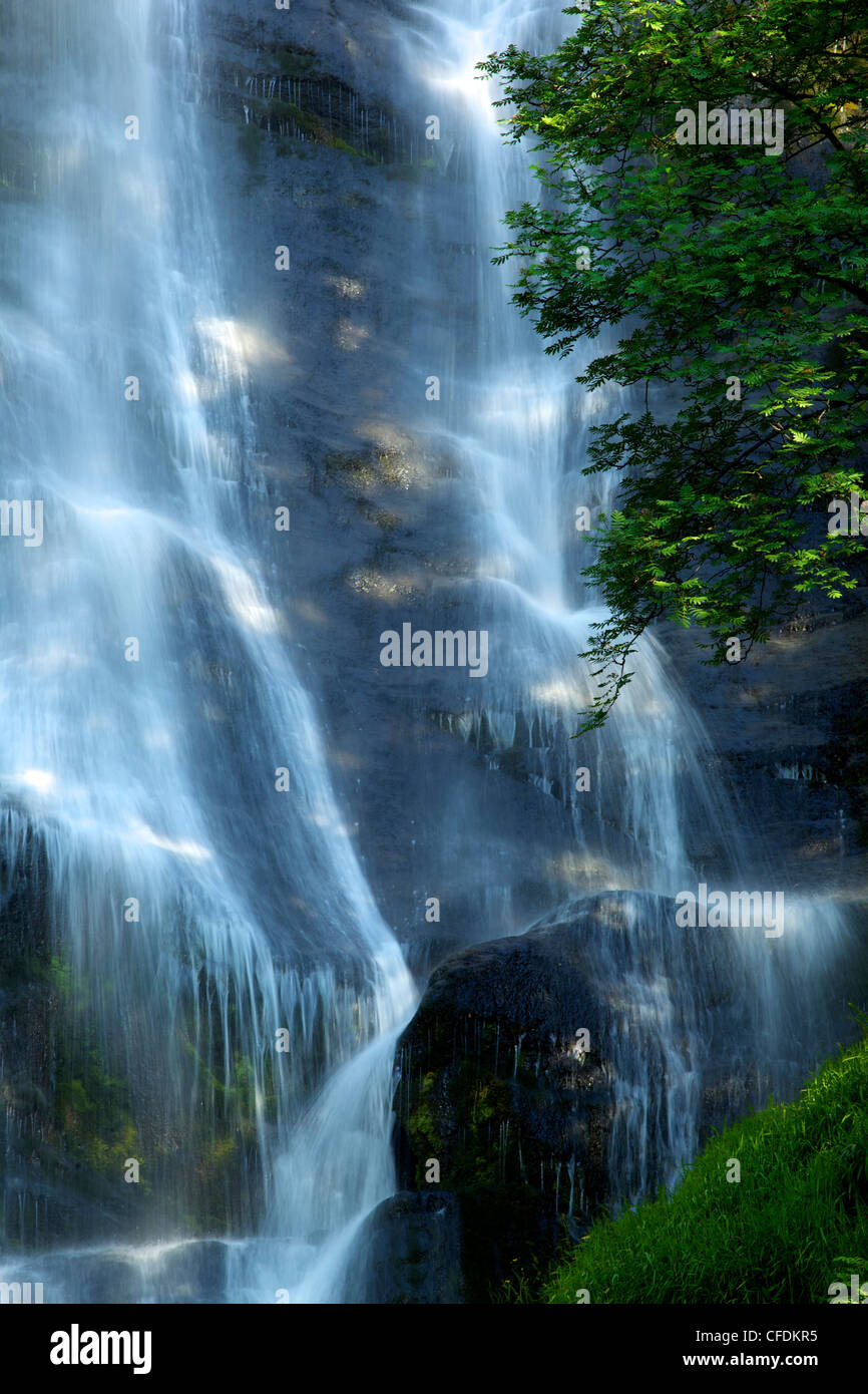 Pistyll Rhaeadr waterfall near Llanrhaeadr-ym-Mochnant, early morning light in June, Powys, Wales, United Kingdom, - Stock Image