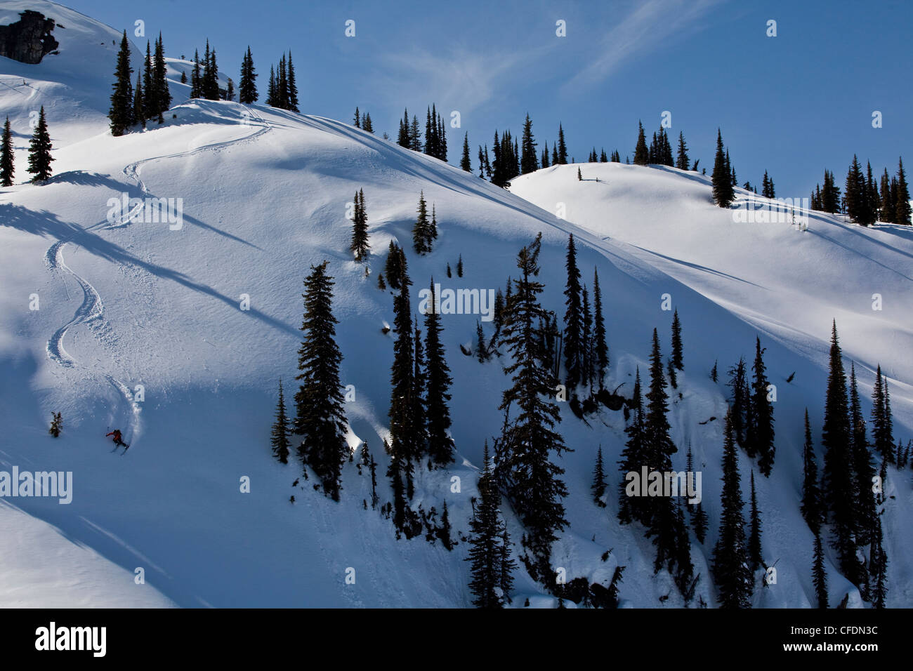 A male skier earns his turns and skis fresh powder while ski touring at, Sol Mountain Lodge, Monashees, British - Stock Image