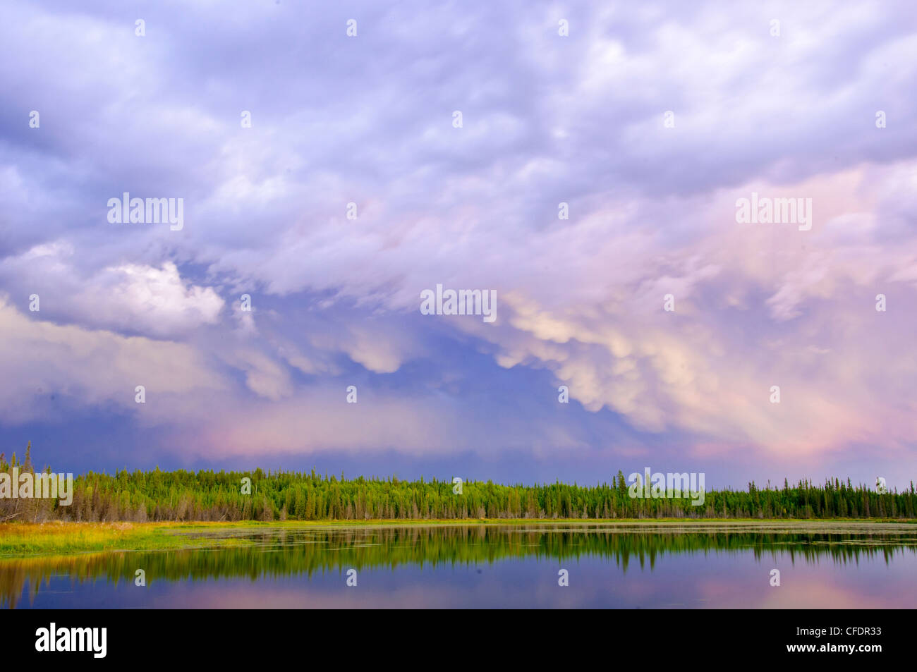Thunderstorm in the boreal forest, Yellowknife environs, Northwest Territories, northern Canada - Stock Image