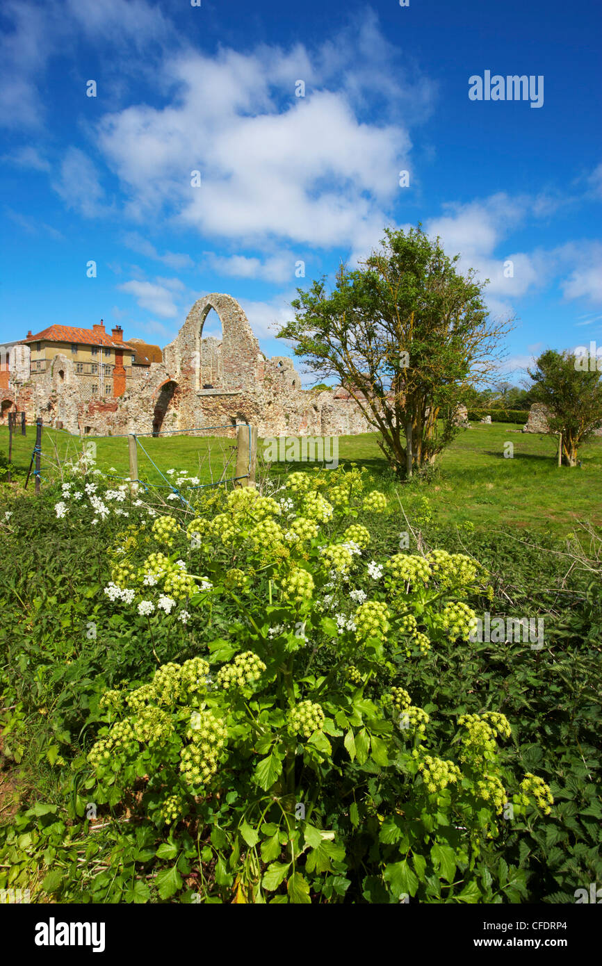 A view of Leiston Abbey, Suffolk, England, United Kingdom, Europe - Stock Image