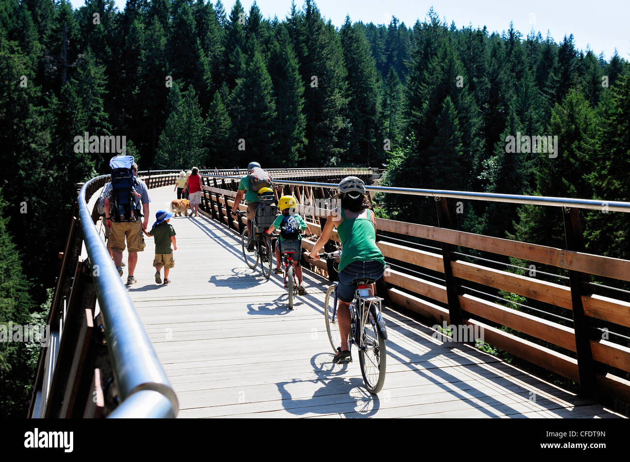Cyclists and hikers crossing the newly refurbished Kinsol Trestle in the Shawnigan Lake, British Columbia, Canada. - Stock Image