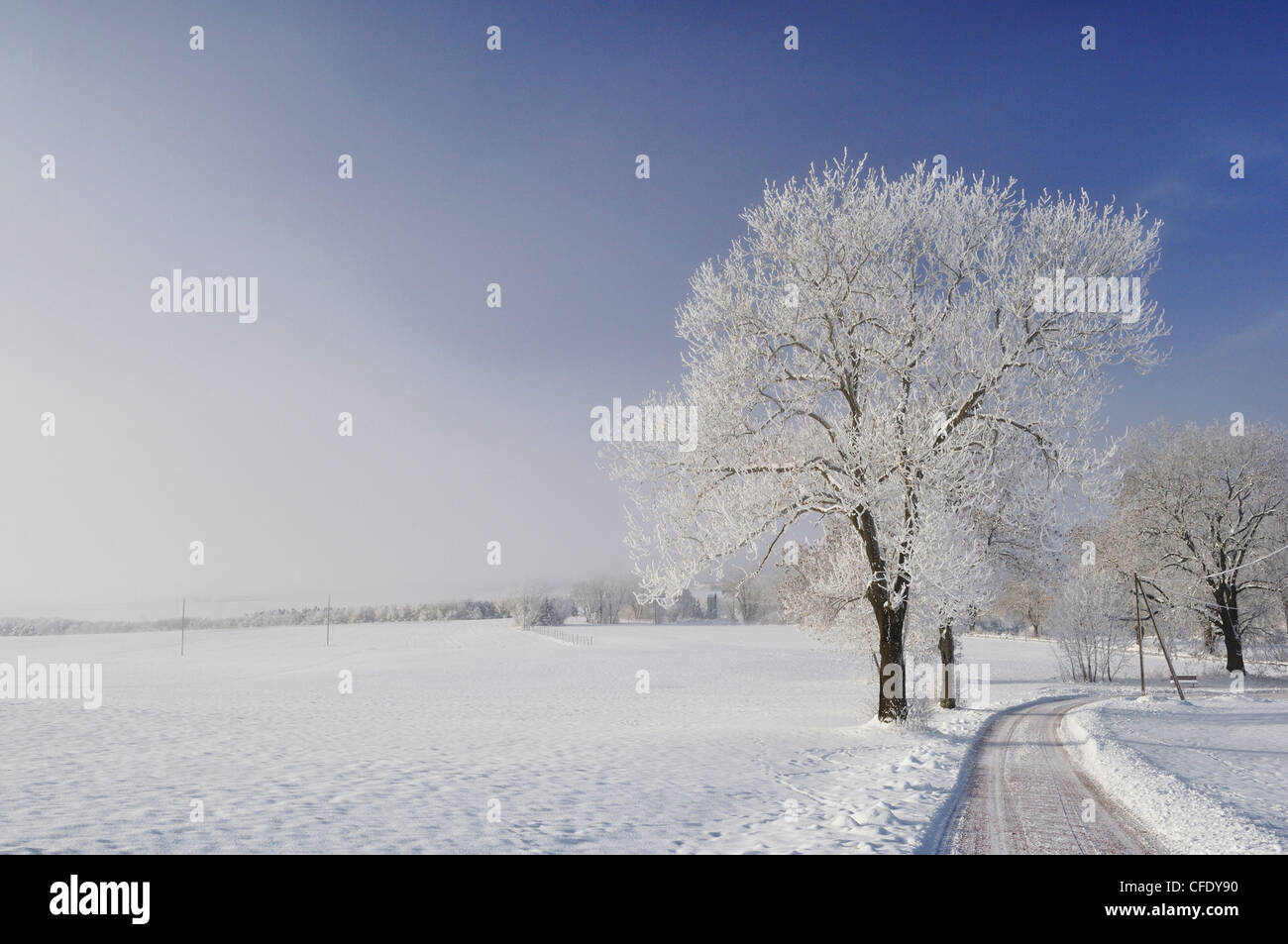 Winter landscape, near Villingen-Schwenningen,,Forest-Baar (Schwarzwald-Baar) district, Baden-Wurttemberg, Germany, - Stock Image