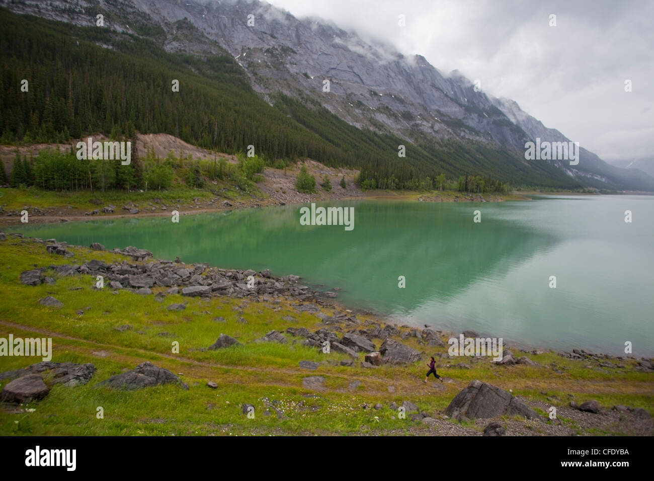 A young asian woman trail running along the shores of Medicine Lake, Jasper National Park, Alberta, Canada - Stock Image