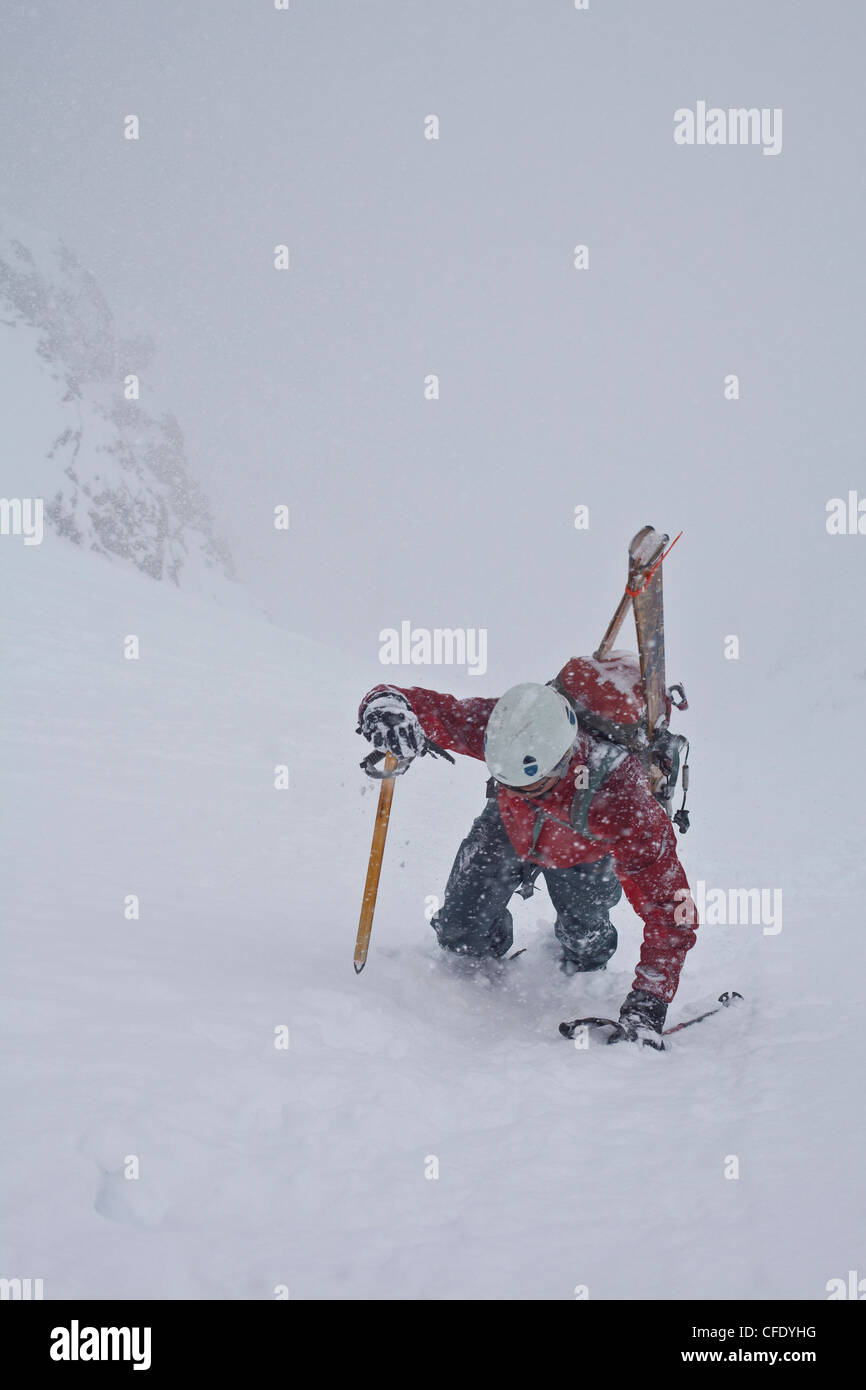 A middle aged man bootpacks up the famous Aemmer coulior on Mt Temple, Lake Louise, Banff National Park, Alberta, - Stock Image