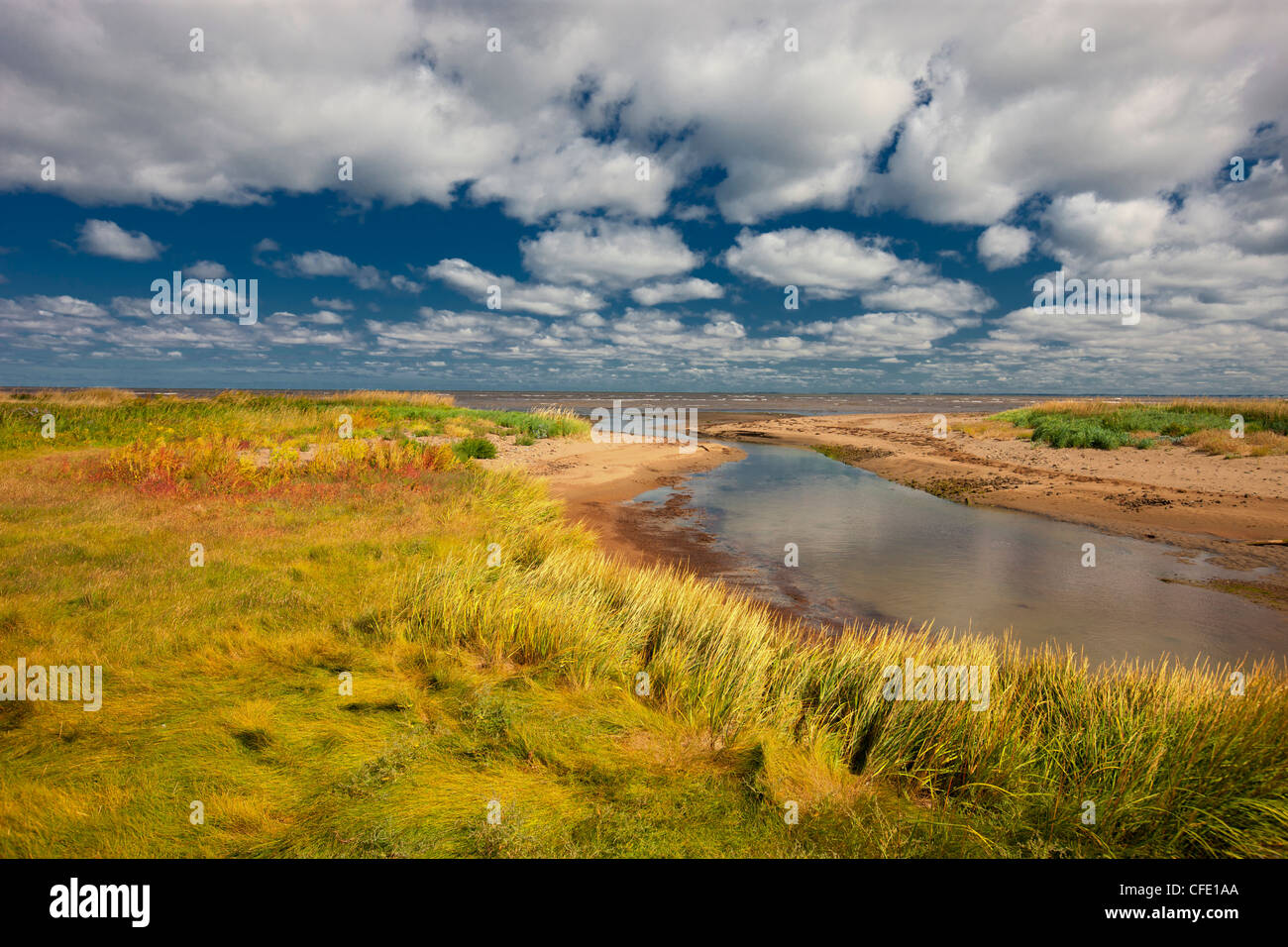 Near Murray Beach, Acadian Coast, New Brunswick, Canada - Stock Image