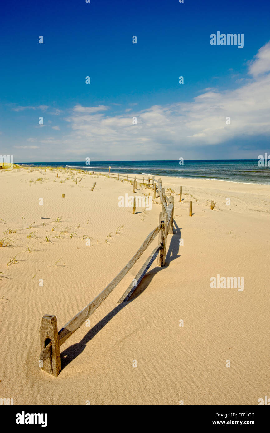 Island Beach State Park, New Jersey, United States - Stock Image