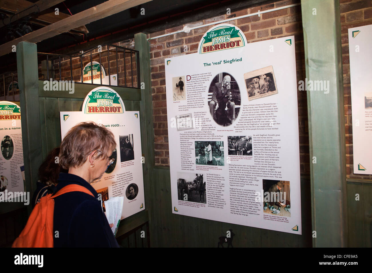 UK, England, Yorkshire, Thirsk, Kirkgate, James Herriot's surgery, visitor looking at exhibition in old stables - Stock Image