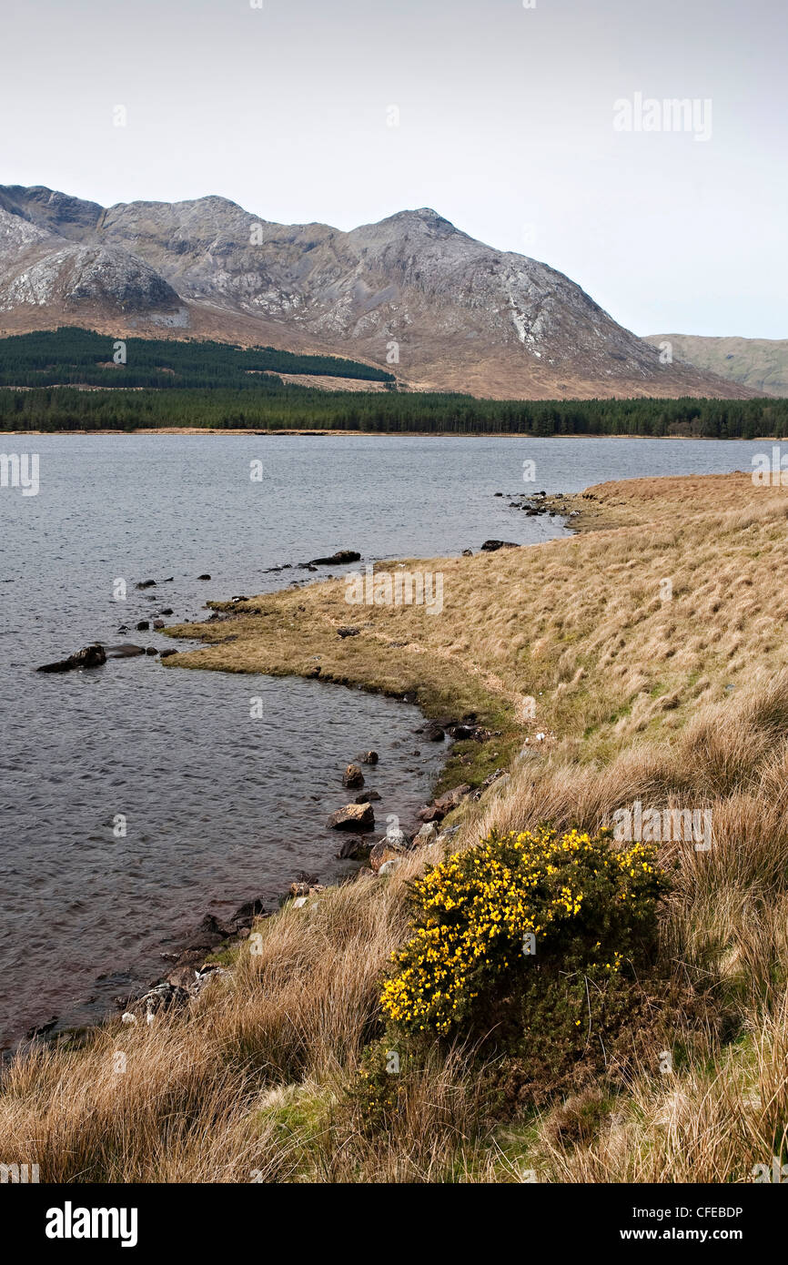 Lough Inagh, Connacht, Galway, Ireland - Stock Image