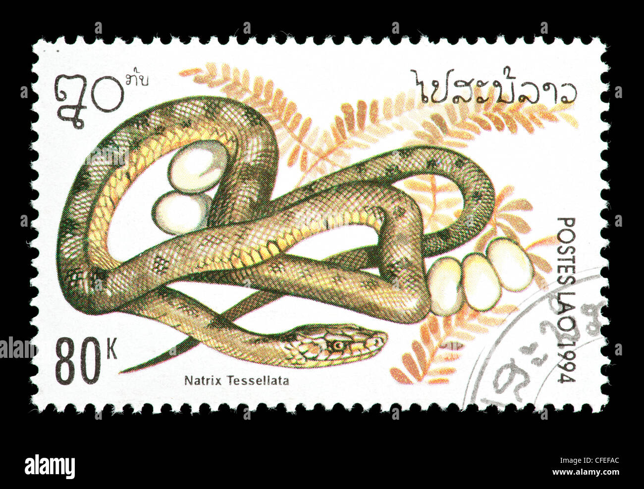 Postage stamp from Laos depicting a dice snake (Natrix tessellata) - Stock Image