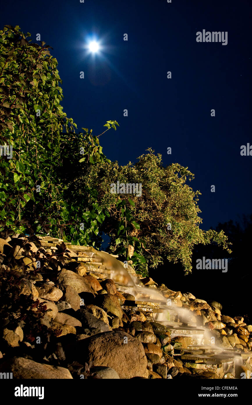 Night Image of a pond waterfall and plants, the moon shines bright and full from above. - Stock Image