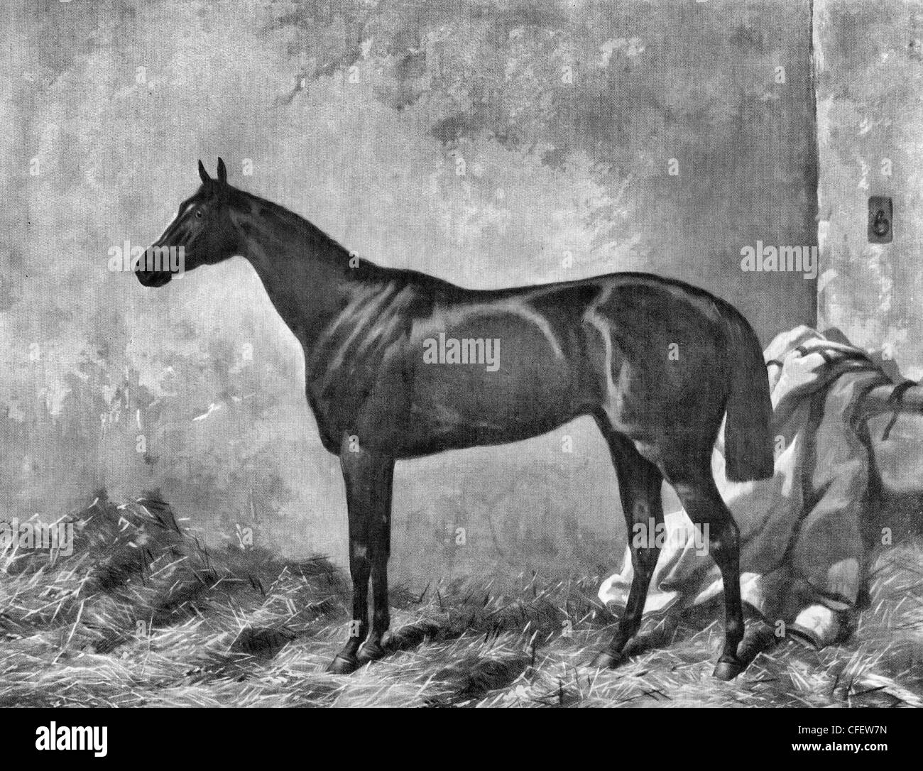 Hermit, winner of the Derby Stakes at Epsom, 1867 - Stock Image
