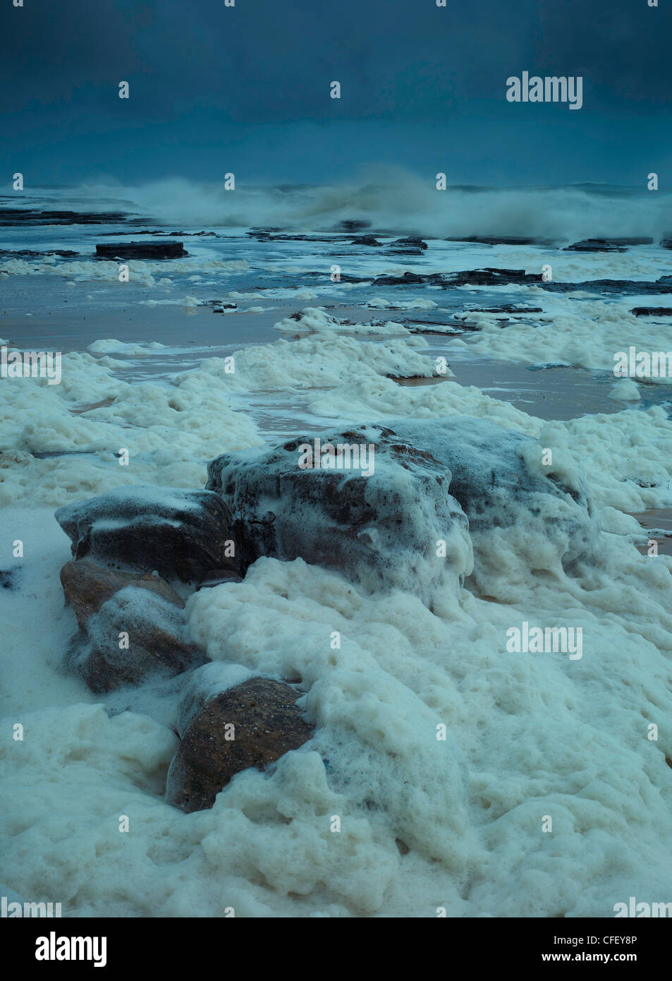 wild seas cover the beach in frothed foam during squall, Wombarra, NSW Australia - Stock Image
