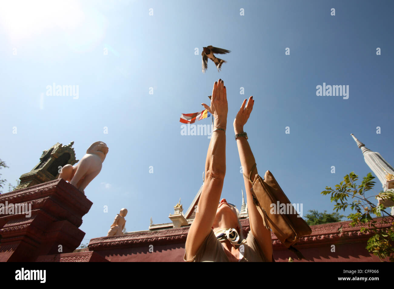 Woman releases sparrow, Phnom Penh, Cambodia, Indochina, Southeast Asia, Asia Stock Photo