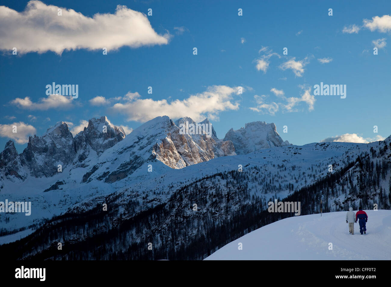 Winter walk around San Pellegrino pass, Pale di San Martino range in the background, Dolomites, Alps, Trentino Alto Stock Photo