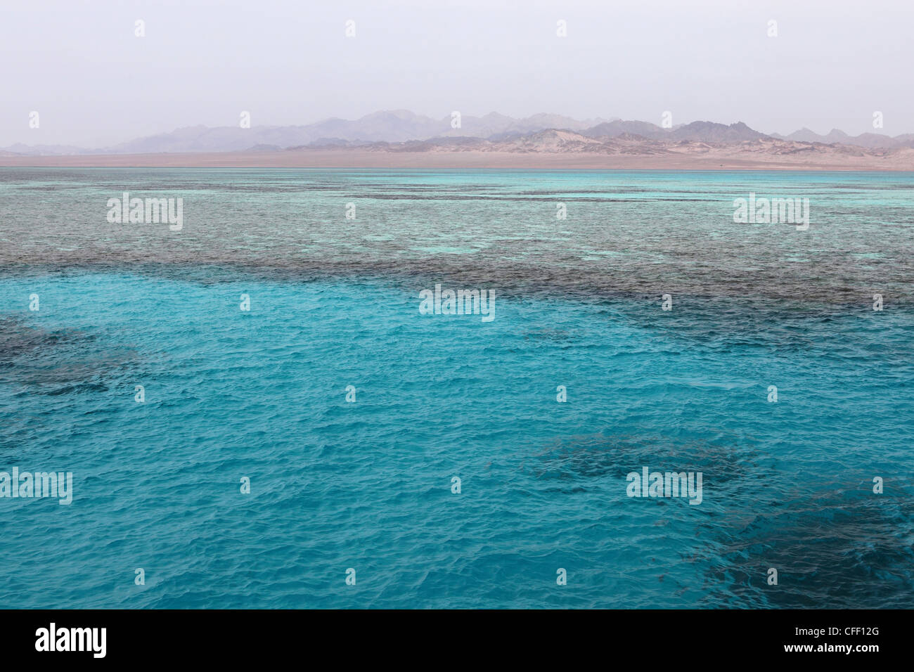 Clear Red Sea waters, Ras Mohammed National Park, Sinai South, Egypt, North Africa, Africa - Stock Image