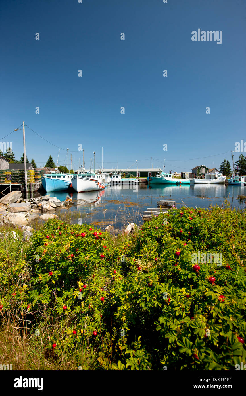 Fishing boats tied up at Moose Harbour, Nova Scotia, Canada - Stock Image