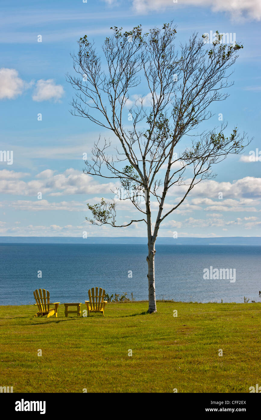Lawn chairs and birch tree, Cape George, Nova Scotia, Canada - Stock Image