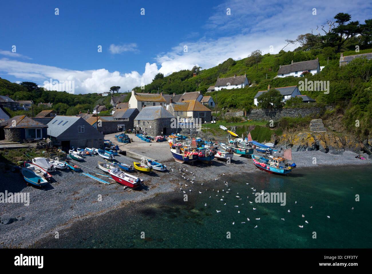 Fishing boats on the beach at Cadgwith, Lizard Peninsula, Cornwall, England, United Kingdom, Europe - Stock Image