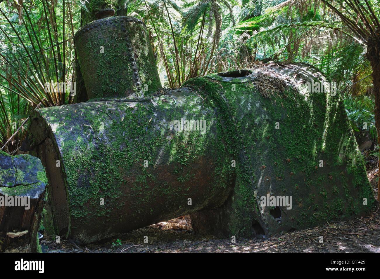 abandoned steam boiler, near Triplet falls, Victoria, Australia - Stock Image